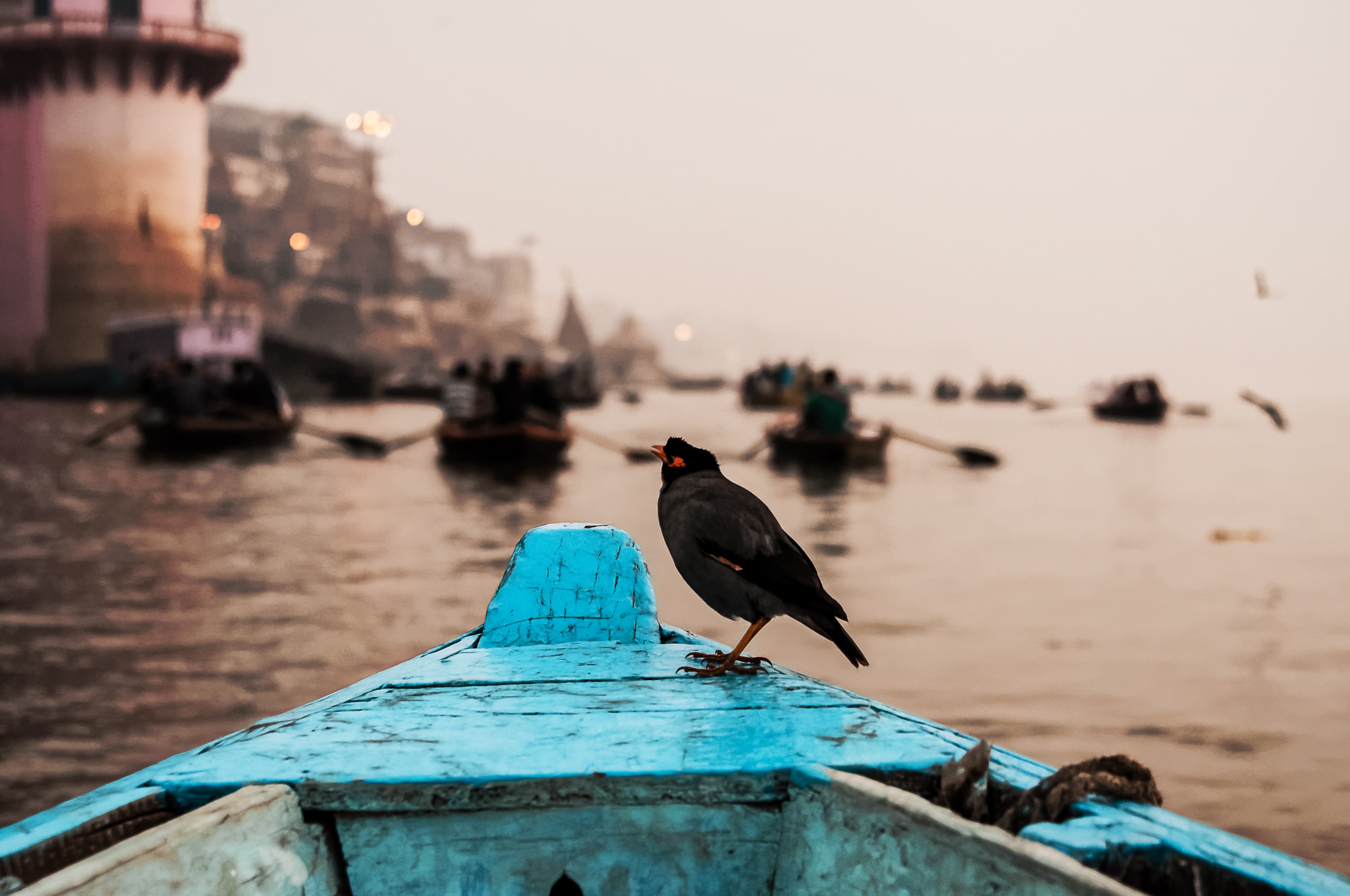 Ganges Boat Ride at Dawn